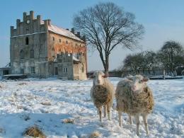 Замок Георгенбург фото 1