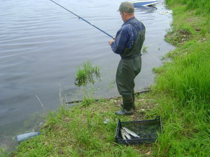 форум рыбаков иван обл