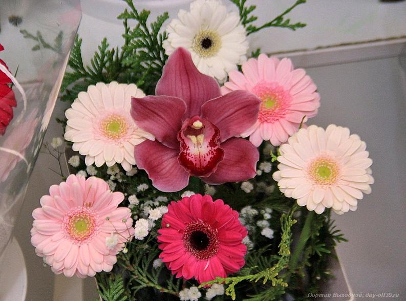 Бисера доставка цветов в калининграде заказать букеты