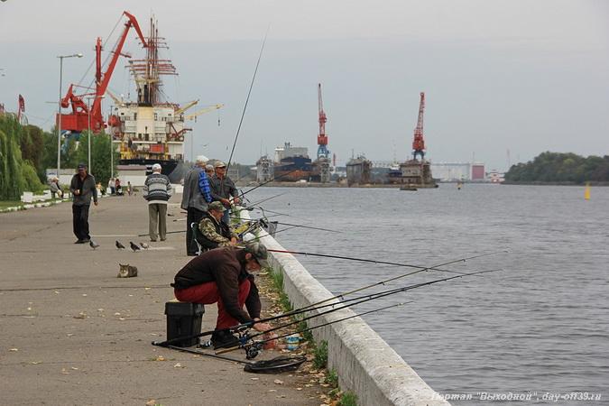 Рыбалка в Калининградской области сегодня