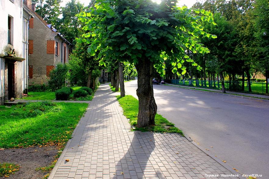 Калининград город озерск памятники смотреть фото